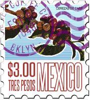 GREEN COFFEE Mexico Altura