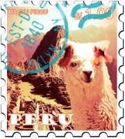GREEN COFFEE Peru: Certified Organic & Fair Trade
