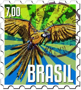 GREEN COFFEE Brazil Sul de Minas / Cerrado