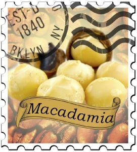 Macadamia Dark Roast Flavored Coffee